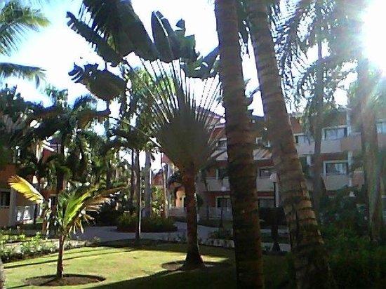 Grand Bahia Principe Punta Cana: from the patio