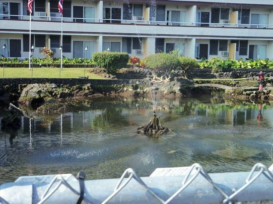 Hilo Seaside Hotel: koi pond in front of the hotel