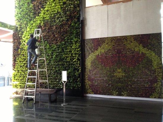 Hansar Bangkok Hotel : Green design