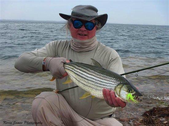Lake Nasser: Exotic Tiger Fish