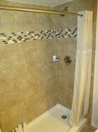 SUNSOL International Drive: O banheiro é servido por chuveiro. Não tem banheira.