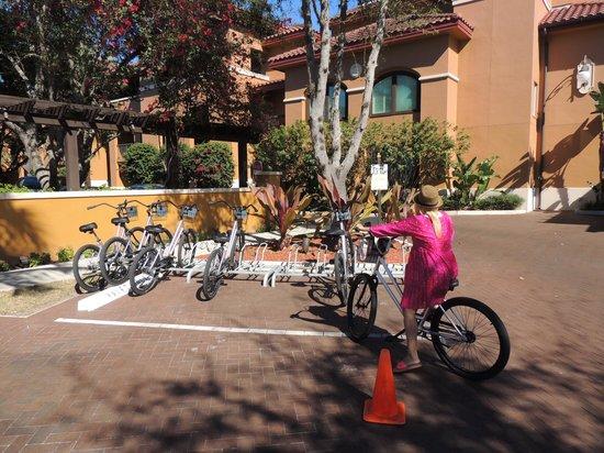 Bellasera Resort: Paseos en bici
