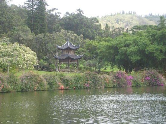 Orchid House and Gardens: A tranquil site ò Lana'i