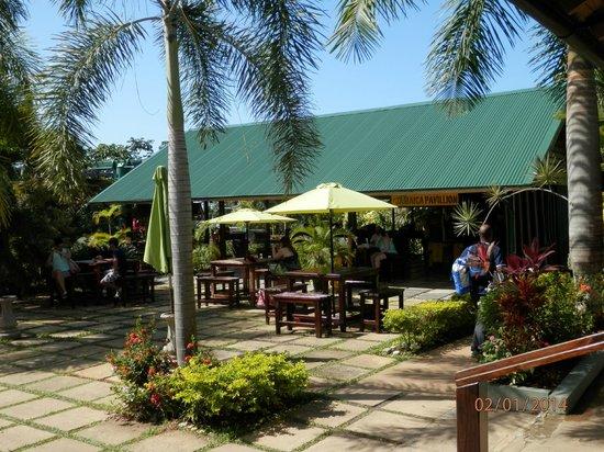 Rainforest Adventures Jamaica : *
