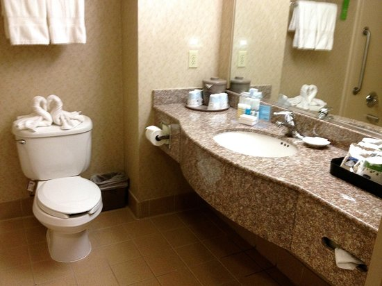 Hampton Inn San Francisco-Airport: Bathroom