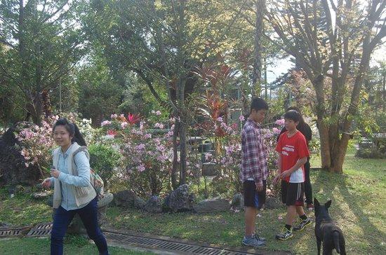 Xiangyangshan B&B: 花園一角