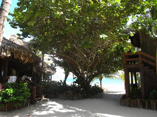 Ramon's Village Resort: Path leading to beach