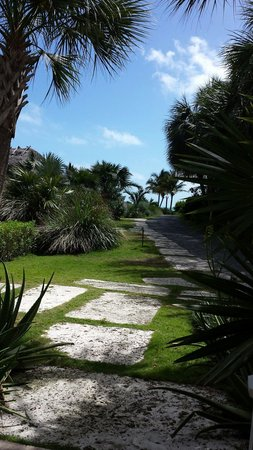Ocean House: Path to the pool and beach