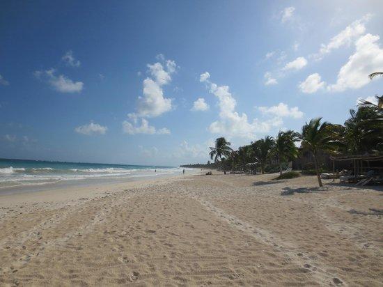 Encantada Tulum : beach in front of Encantada
