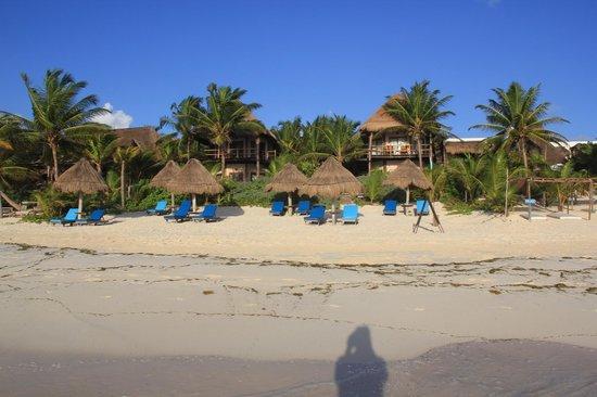 Encantada Beachfront Boutique Hotel : beach in front of Encantada