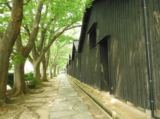 Sankyo Soko Storehouse: 山居倉庫(ケヤキ並木)
