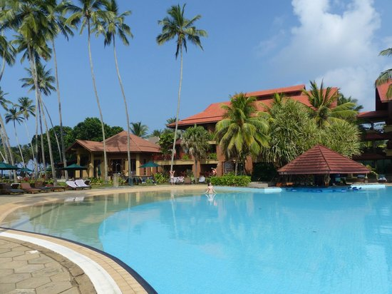 Royal Palms Beach Hotel : Pool area - relatively shallow so no Olympic Swimming.