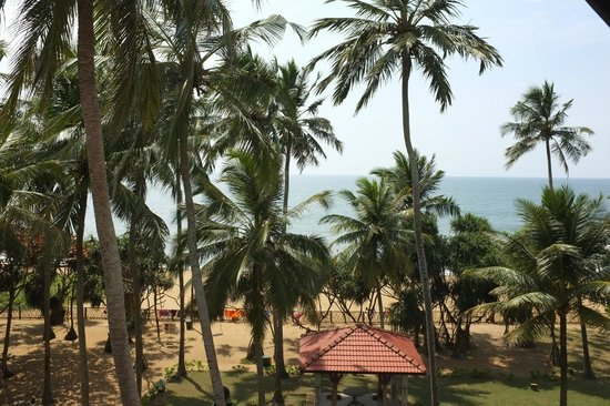 Royal Palms Beach Hotel : Ocean view and gardens from Penthouse