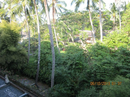 Prama Sanur Beach Bali: view from room overlooking the gardens