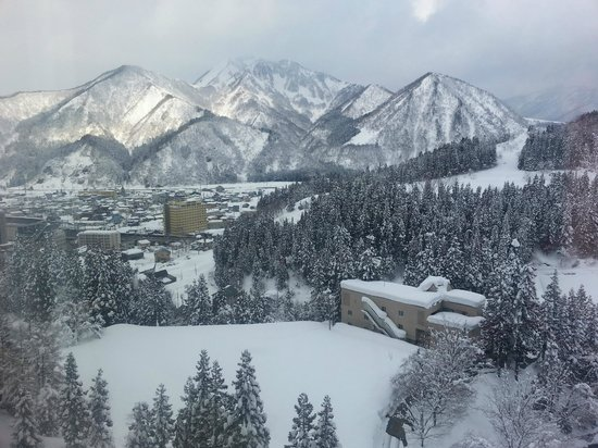 NASPA New Otani: The view from the room is amazing!