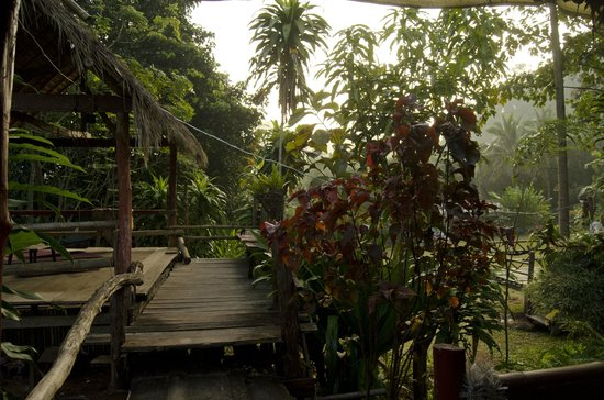 Bamboo Country Lodge: view from the dining area