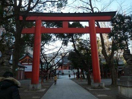 Hanazono Shrine: 02花園神社 鳥居