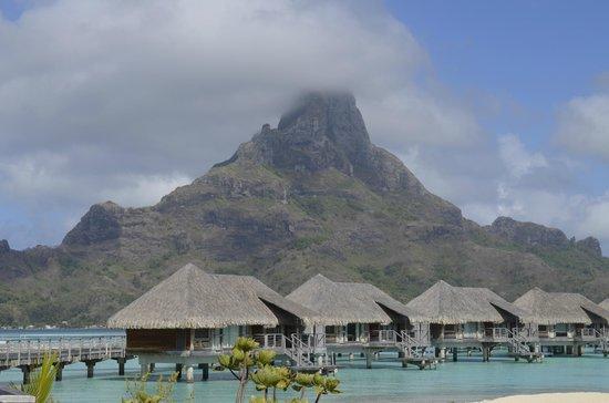 InterContinental Bora Bora Resort & Thalasso Spa: Stunning!