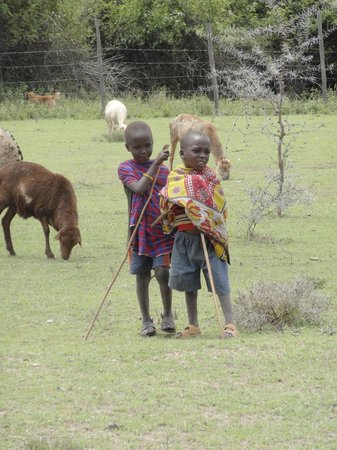 Enkewa Camp : Masai children looking after their animals