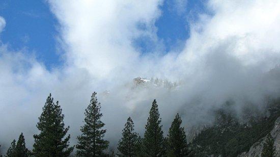 The Majestic Yosemite Hotel: Half Dome after rain