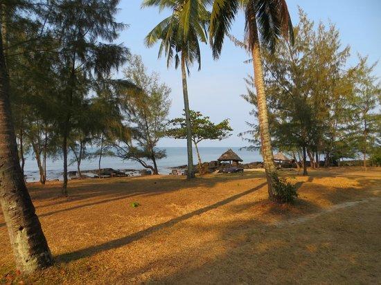 Mango Bay Resort: View