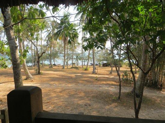 Mango Bay Resort: View from room
