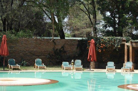 Samburu Game Lodge: The Pool area