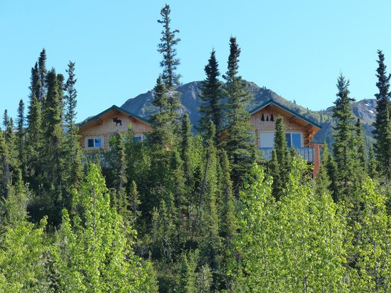 Denali Grizzly Bear Resort : Resort