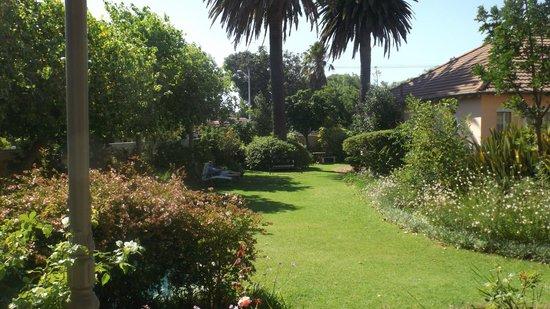 Medindi Manor : Garden