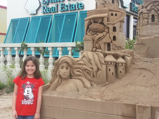 Sandcastle Lessons : Whats that Arial?