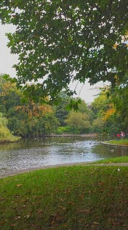 Parque St Stephen's Green: The park in autumn