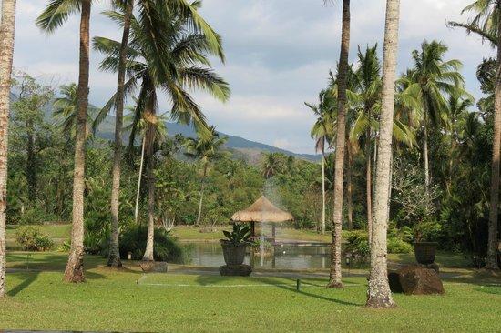 The Farm at San Benito: Parc zen