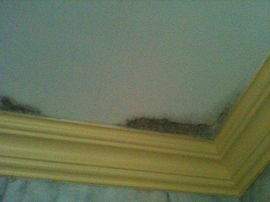 Lingganay Boracay Hotel Resort: Bathroom ceiling: More mould