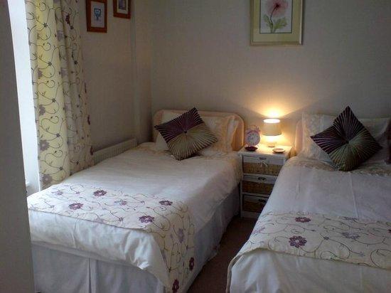 Mountain View B & B: Twin-bedded room