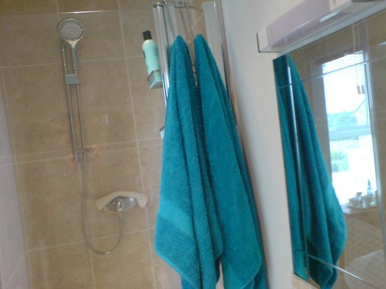 Mountain View B & B: Power shower in King-sized room
