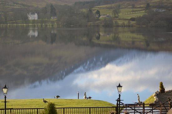 Briar Cottages: Reflections on the Loch