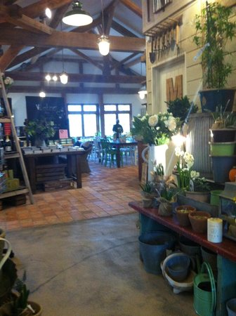 Duchy of Cornwall Nursery & Cafe: view of cafe from shop