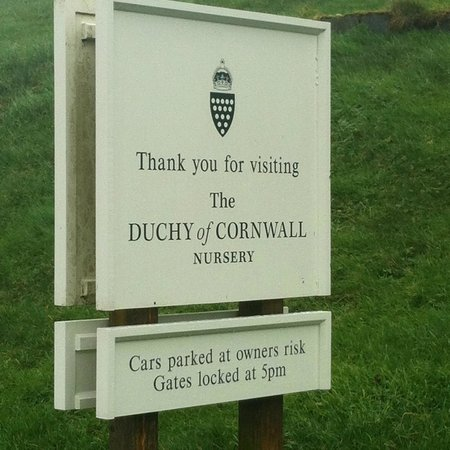 Duchy of Cornwall Nursery & Cafe: you're welcome
