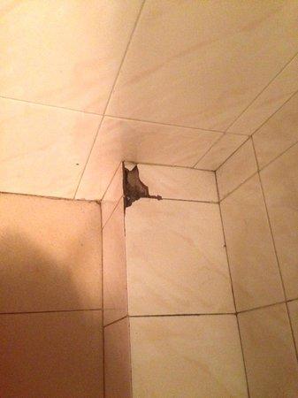 Apartaments Turistics K-2 : en el baño muy higiénico