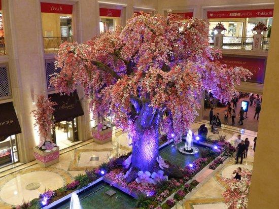 The Venetian Las Vegas: Autre galerie