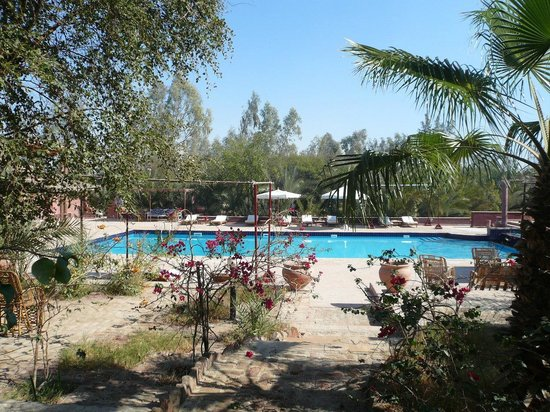 Al Moudira Hotel: La piscine depuis les jardins