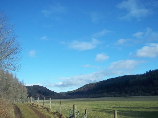Wildside Highland Lodges: View on the Red Squirrel Walk