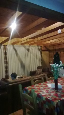 Wildside Highland Lodges: View from the kitchen. The ceiling is much higher than it looks in some pics