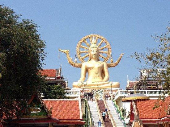 Orchid Residence Samui: Big Buddha, Koh Samui