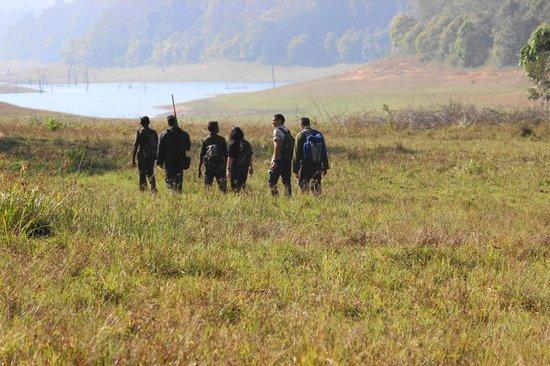 Periyar Wildlife Sanctuary : treking in the junlge