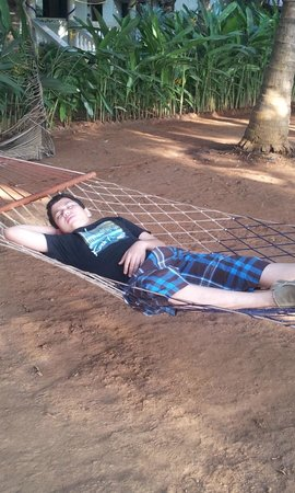 Madachya Banat: Hammocks in the opens pace