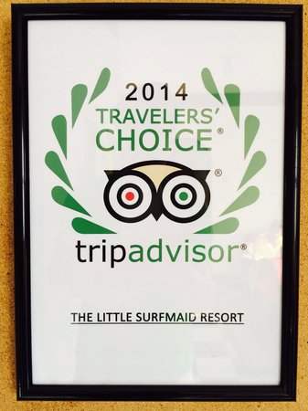 The Little Surfmaid Resort: Travelers' Award. Wow. A real indication.