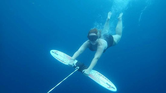 The Dive Inn : The reef surfer