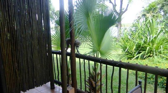 Chobe Marina Lodge : Visitas em nossa sacada da suite.