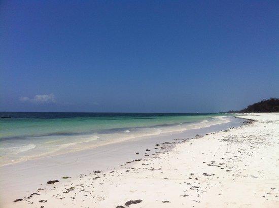 Diani Marine Divers Village: The beach just outside Diani marine